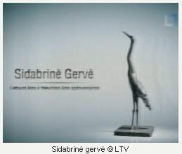 """FIKSAVOME: """"SIDABRINĖ GERVĖ 2010"""""""